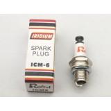 RCEXL ICM-6 Spark Plug